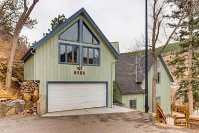 101 Horn Street, Black Hawk, CO 80422 - #: 7053520