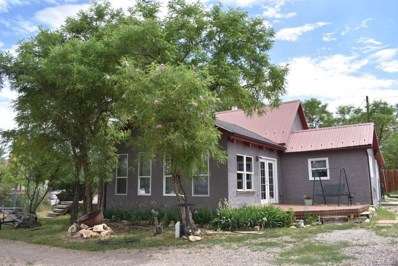506 1st Street, Silver Cliff, CO 81252 - #: 7055998