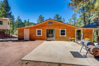 28503 Amerind Springs Trail, Pine, CO 80470 - #: 7073875
