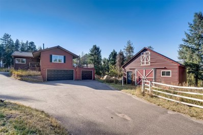 10001 Apache Spring Drive, Conifer, CO 80433 - #: 7249265