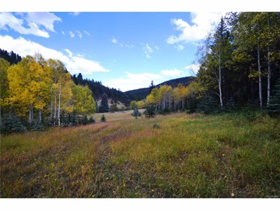 7579 Whispering Brook Trail, Evergreen, CO 80439 - #: 7251921