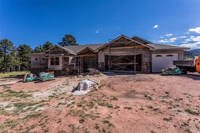 1225 Cottontail Trail, Woodland Park, CO 80863 - MLS#: 7254933