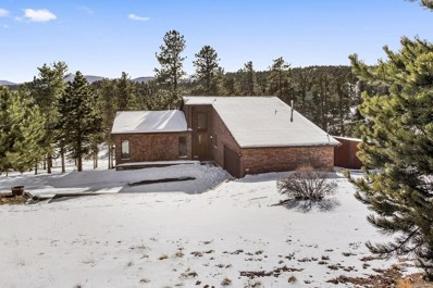 156 Old Corral Road, Bailey, CO 80421 - #: 7297275