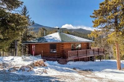 260 Pine Drive, Idaho Springs, CO 80452 - MLS#: 7330545