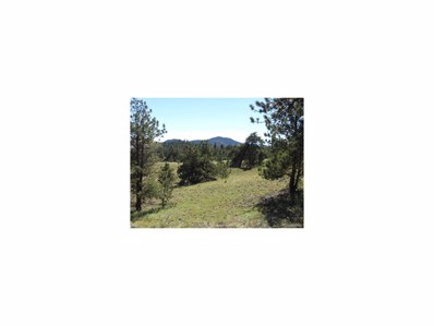 Lot 2 Deer, Guffey, CO 80820 - MLS#: 7336663