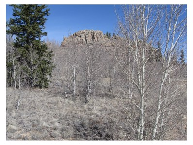 336 Apache Trail, Como, CO 80432 - MLS#: 7374235
