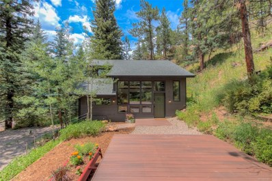 7020 S Blue Creek Road, Evergreen, CO 80439 - #: 7395251