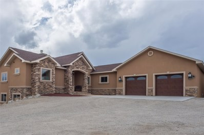 30795 Overlook Run, Buena Vista, CO 81211 - MLS#: 7455144