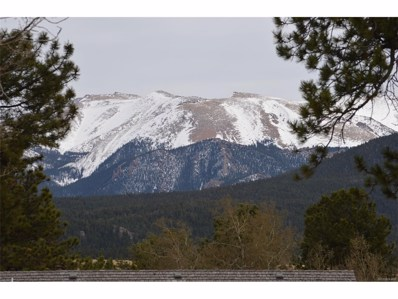 106 Stephanie Place, Divide, CO 80814 - MLS#: 7500389