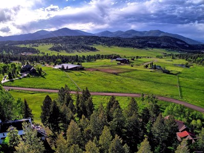 32583 Snowshoe Road, Evergreen, CO 80439 - #: 7500940