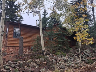 311 Dewell Road, Woodland Park, CO 80863 - #: 7501451