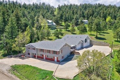 91 Black Birch Road, Golden, CO 80401 - #: 7548773