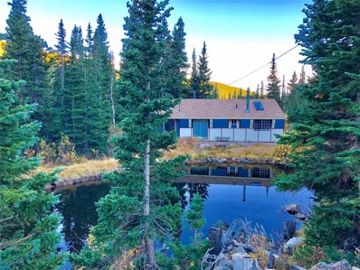 200 Alice Drive, Idaho Springs, CO 80452 - MLS#: 7582625