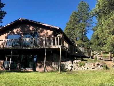 24733 N Turkey Creek Road, Evergreen, CO 80439 - #: 7640309