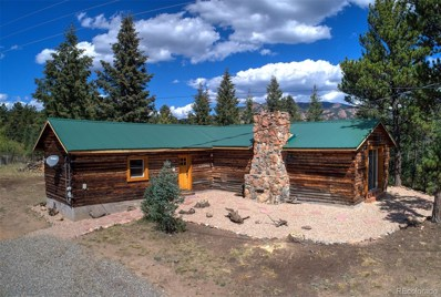 33529 Warren Road, Pine, CO 80470 - MLS#: 7649293