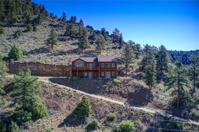 188 Big Rock Lane, Bailey, CO 80421 - #: 7696959