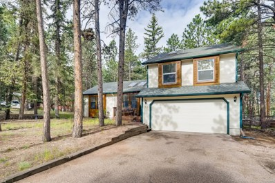 914 Centre Camino, Woodland Park, CO 80863 - #: 7758783