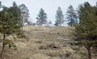 Lot 21 Lions Head, Pine, CO 80470 - MLS#: 798090