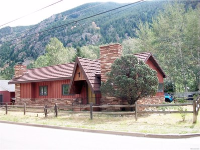 1024 Rose Street, Georgetown, CO 80444 - MLS#: 8007387