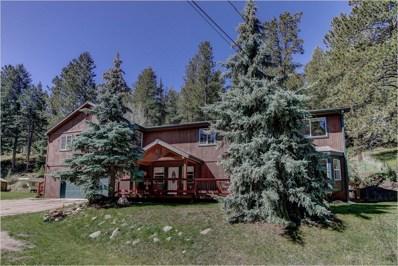 4961 Little Cub Creek Road, Evergreen, CO 80439 - #: 8036282