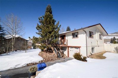 133 Big Elk Road, Dillon, CO 80424 - MLS#: 8072620