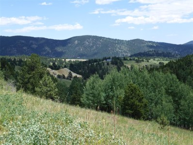 5 Wellington Mine Road, Central City, CO 80427 - #: 8100533