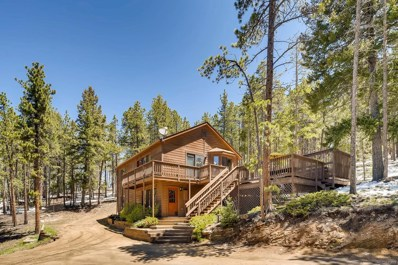 10692 Us Highway 285, Conifer, CO 80433 - #: 8109814