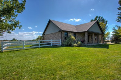 20200 E 152nd Avenue, Brighton, CO 80603 - #: 8123460