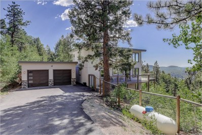 11770 Penny Road, Conifer, CO 80433 - #: 8171786
