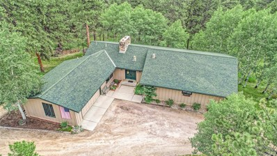 303 Kings Road, Evergreen, CO 80439 - #: 8182326