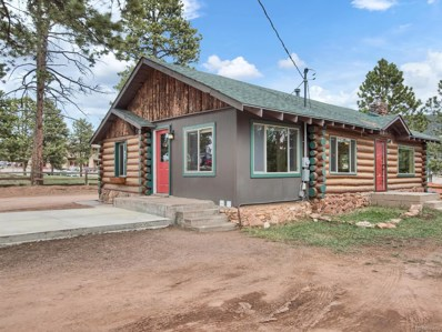 214 S Willow Street, Woodland Park, CO 80863 - #: 8223200