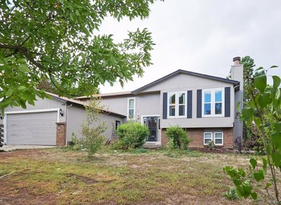 810 Park View Place, Castle Rock, CO 80104 - MLS#: 8228291