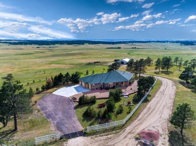 30905 Ridge Road, Ramah, CO 80832 - #: 8248096