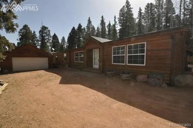656 Black Bear Drive, Divide, CO 80814 - MLS#: 8258891