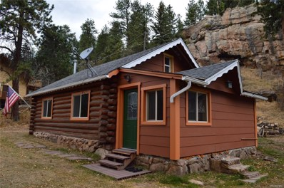 8137 S Brook Forest Road, Evergreen, CO 80439 - #: 8279754