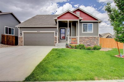 4675 Dancing Rain Way, Colorado Springs, CO 80911 - MLS#: 8375248