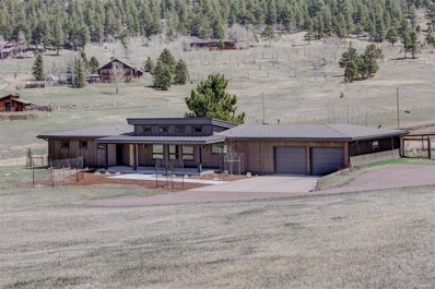 32381 Horseshoe Drive, Evergreen, CO 80439 - #: 8382761