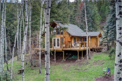 33966 Columbine Circle, Evergreen, CO 80439 - #: 8392465