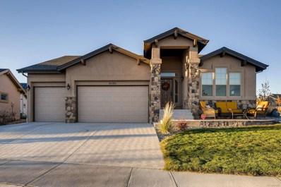 9286 Kathi Creek Drive, Colorado Springs, CO 80924 - MLS#: 8404130