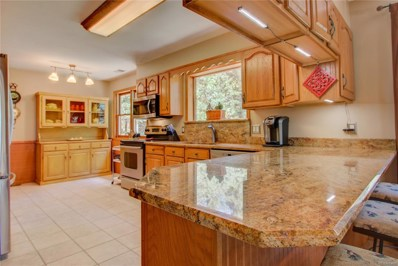 30834 Kings Valley Drive, Conifer, CO 80433 - MLS#: 8411576