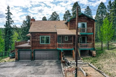 388 Spruce Lake Drive, Divide, CO 80814 - #: 8425808