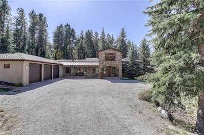 8701 Grizzly Way, Evergreen, CO 80439 - #: 8432332