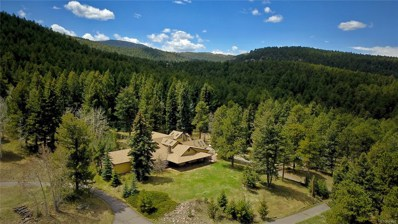22434 North Turkey Creek Road, Morrison, CO 80754 - #: 8484399