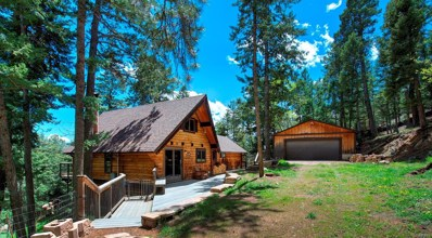 30888 Isenberg Lane, Evergreen, CO 80439 - #: 8567156