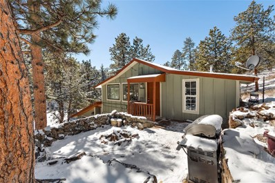 5437 S Brook Forest Road, Evergreen, CO 80439 - #: 8609533