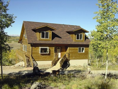 79 Buckskin Court, Como, CO 80432 - MLS#: 8638798