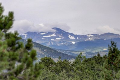 30655 Snowbird Lane, Evergreen, CO 80439 - #: 8665447