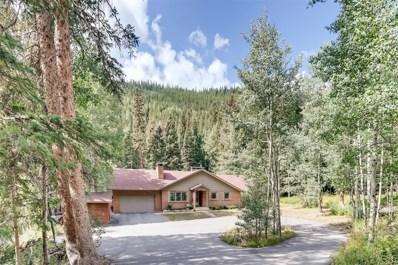 2831 Mill Creek Road, Dumont, CO 80436 - #: 8680480