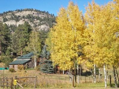 5078 Buffalo Creek Drive, Evergreen, CO 80439 - #: 8738756
