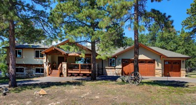 5903 S Langdon Drive, Evergreen, CO 80439 - MLS#: 8759414